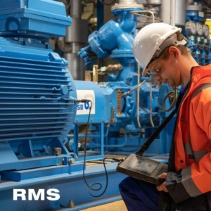 rms services vibration analysis